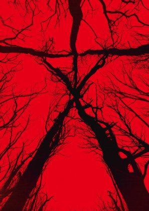 So Sayeth the Odinson: Countdown to Halloween 2017: The Blair Witch Project
